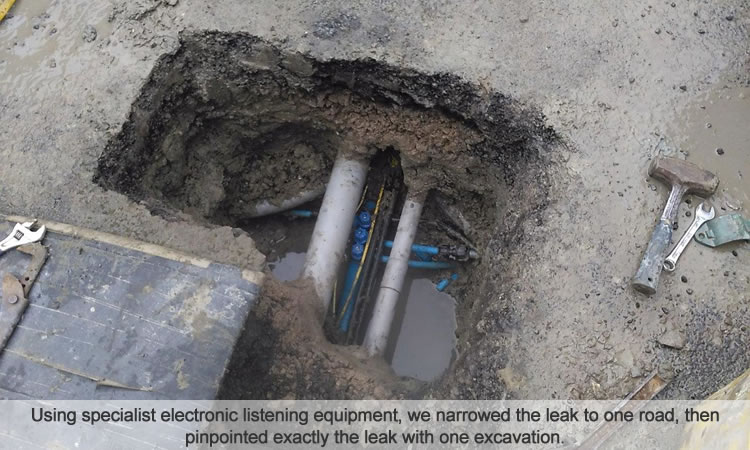 Water mains leak detection